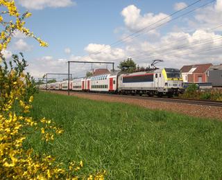 Trein Duinbergen