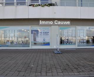 Immo Cauwe Heist
