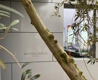 Bartholomeus détail