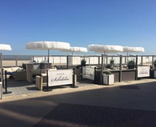 Schildia terrace