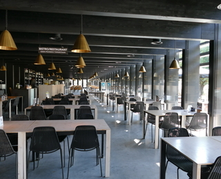 The Shelter interior