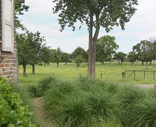 jardin Villa Les Champs de Knokke