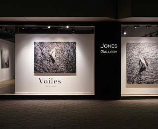 Jones Gallery Zoute Voiles