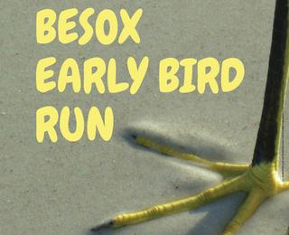 Early Bird Run