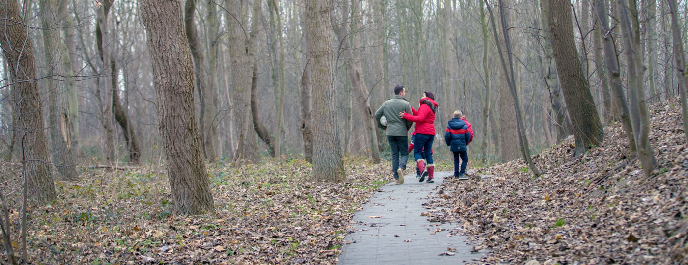 Wandeling in de winter in Knokke-Heist